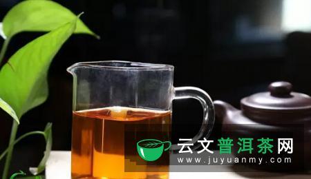 "茶中一宝""老茶头"