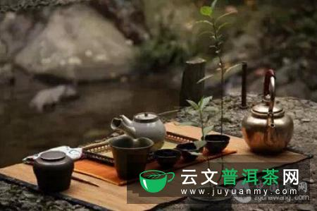 不同体质的人喝不同的茶,效果截然不同