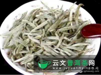 白茶可保肝护肝 ,细数白茶的4大功效