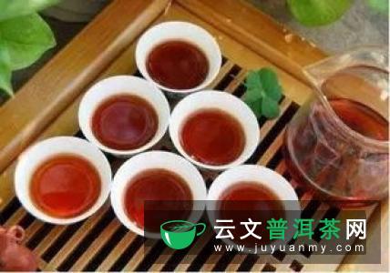 肠胃不好喝什么茶可以调理?