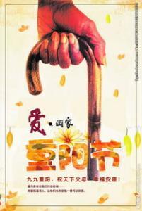 重阳节——饮菊茶